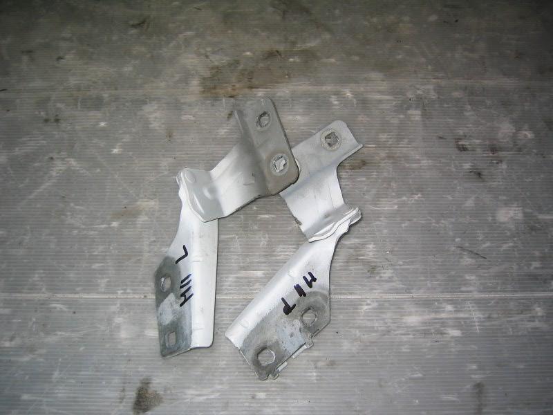 Megane II  02-08 | panty kapoty L+P